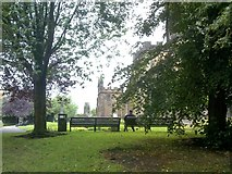 SO9198 : City Garden by Gordon Griffiths