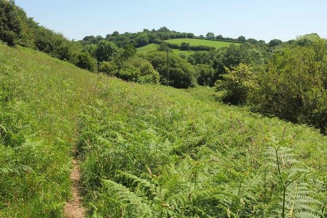Dartmoor Way in Holy Brook valley