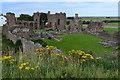 NU1241 : Lindisfarne Priory by David Martin
