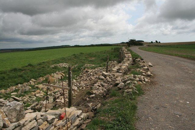 Dry stone wall rebuilding, South Dorset Ridgeway