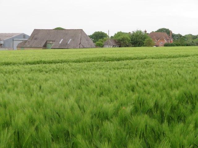 Breach Farm by Sandy B