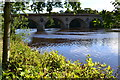 NT8440 : Coldstream Bridge by David Martin