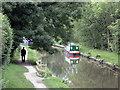 SJ9688 : Peak Forest Canal by Stephen Burton