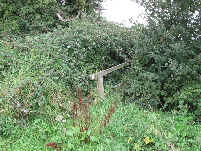 Footbridge on public footpath overgrown by brambles