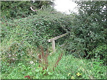 SP7202 : Footbridge on public footpath overgrown by brambles by David Hawgood