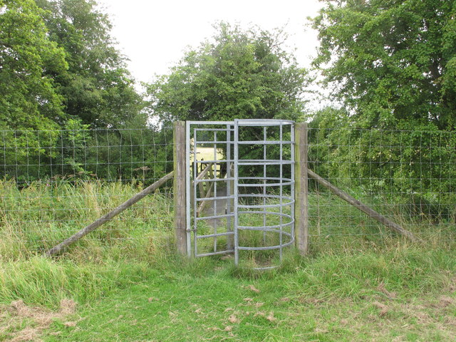 Tall kissing gate in Thame Park fence