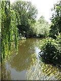 TQ0481 : The River Colne by Packet Boat Lane by Mike Quinn