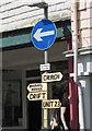 SX8060 : Signpost for Sea Change, Totnes by Derek Harper
