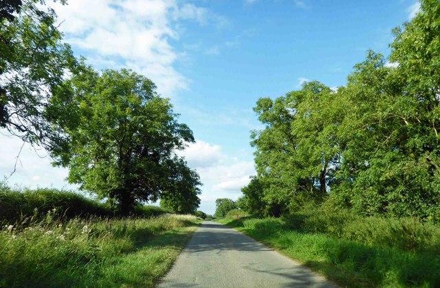 Straight ahead on minor road