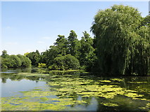 TQ0481 : Little Britain Lake by Packet Boat Lane by Mike Quinn