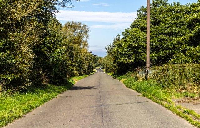 Brereton Lane