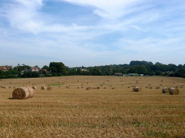 Clapham Field