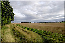 SO8690 : Farmland south of Swindon in Staffordshire by Roger  Kidd