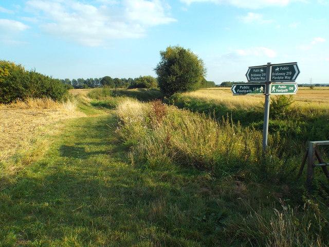 Footpath and bridleway signs alongside Mar Dyke, near Bulphan