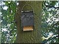 TA1131 : East Park - bat box by Stephen Craven