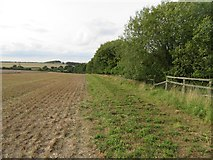SU5846 : Farmland east of M3 - Dummer by Given Up
