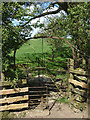 SD6667 : Wrought iron kissing gate above High Bentham by Karl and Ali