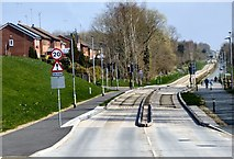 SD6901 : Leigh guided busway by Gerald England