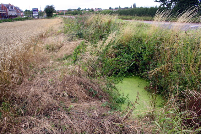 Ditch and culvert beside Ashby Road (B5493)