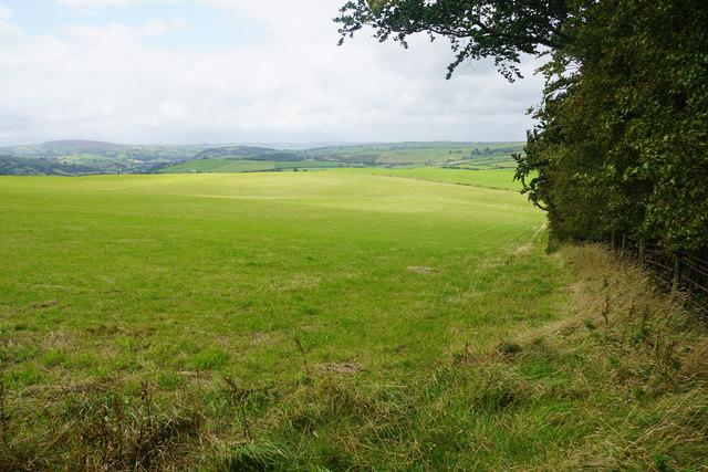 Ridgetop field