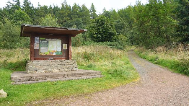 Visitor Information, Hepburn Wood