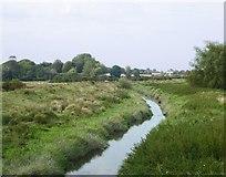 TQ5203 : View upstream from the Long Bridge by Stefan Czapski