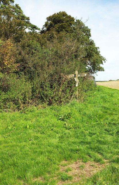 Signpost at path crossroads