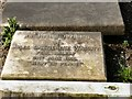 SJ8990 : Julia Catherine Wright (d.1916) by Gerald England