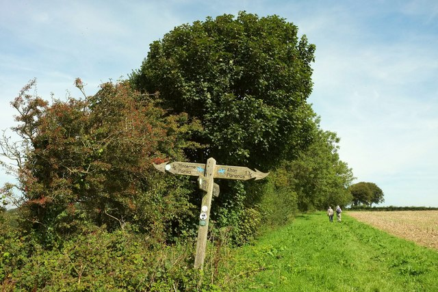 Signpost on the Wessex Ridgeway
