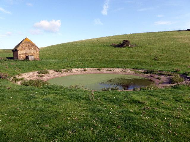 Dew Pond at East Hale Bottom
