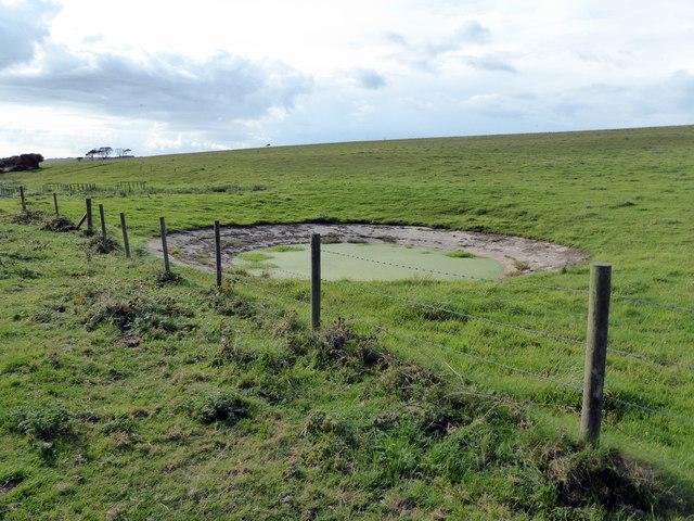 Dew Pond at Wigden's Bottom