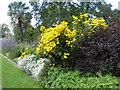 SK3386 : Sheffield Botanical Gardens by pam fray