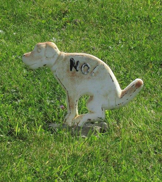 No doggy-dos, Cerne Abbas