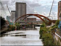 SJ8298 : New Rail Bridge over the Irwell by David Dixon