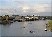 SK5838 : Evening sunlight on the Trent by John Sutton