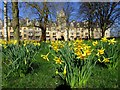 SP5105 : The Meadow Building in Christ Church by Steve Daniels
