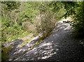 ST5248 : Scree slope in Ebbor Gorge by Neil Owen