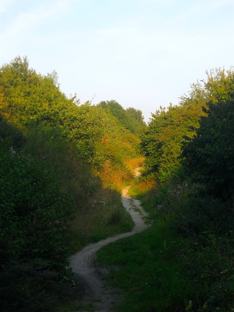 Bridleway 3652