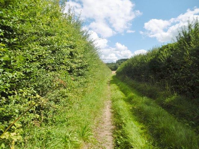 Holwell, footpath