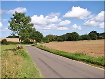 TM3795 : Approach to the A146 road on Wash Lane by Evelyn Simak