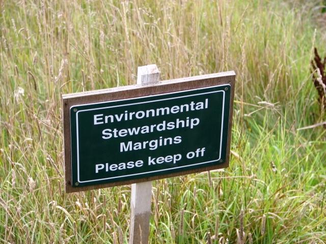 Environmental Stewardship Margins