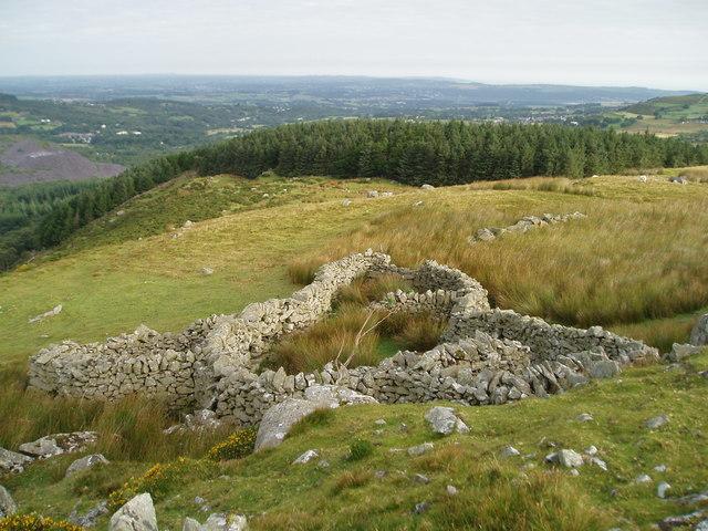 Sheepfold Above Braichmelyn