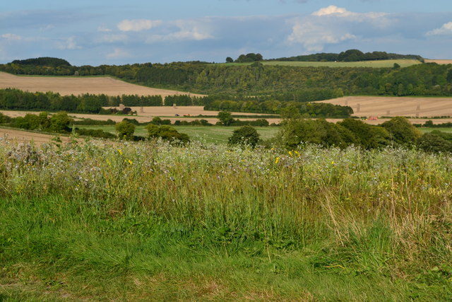 View over fields towards Fawley Down