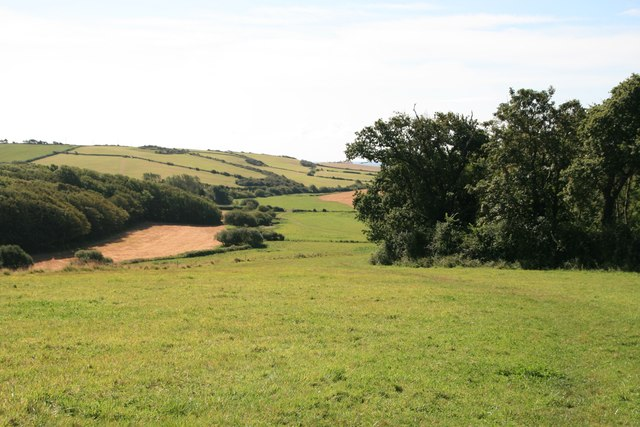 Wyke Wood and Kittle Barrow Plantation