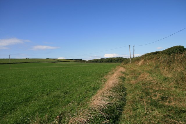 Near Ansty's Withy Bed on the south-west coast path
