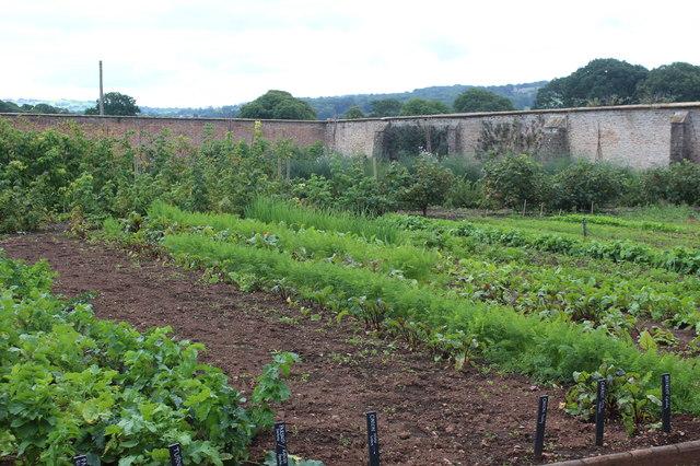Kitchen garden, Tyntesfield
