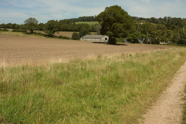Field and barn, Minterne Magna
