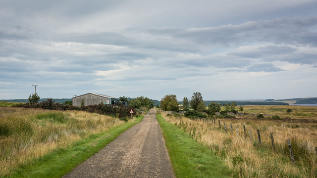 Road and cattle grid