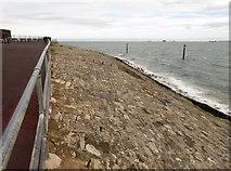 SZ6497 : The seawall by Southsea Castle by Steve Daniels