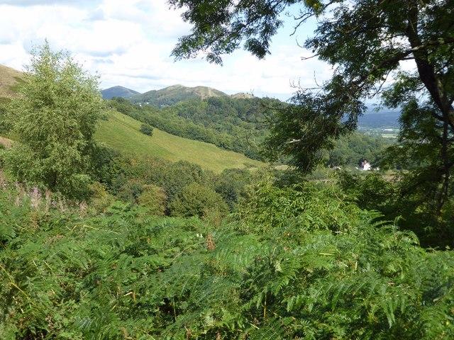 The Malvern Hills viewed from Below Millennium Hill